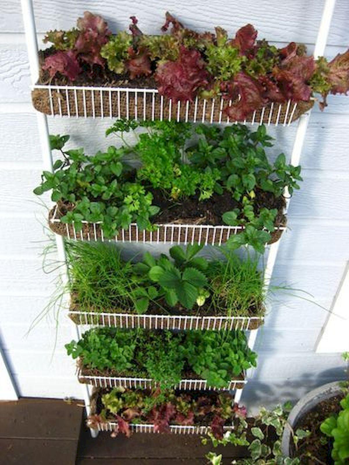 50 Inspiring Small Vegetable Garden Ideas (37 ...