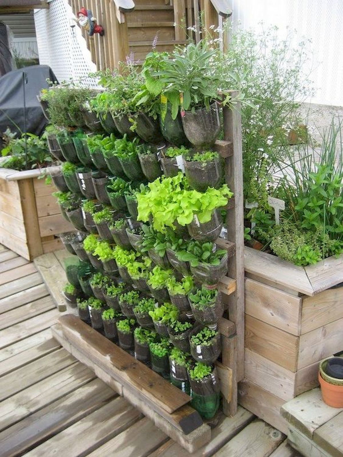 50 Inspiring Small Vegetable Garden Ideas (5 ...