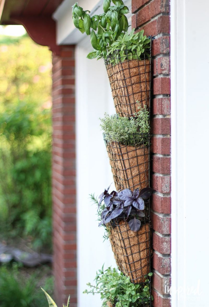 Fantastic  hanging herb garden ideas