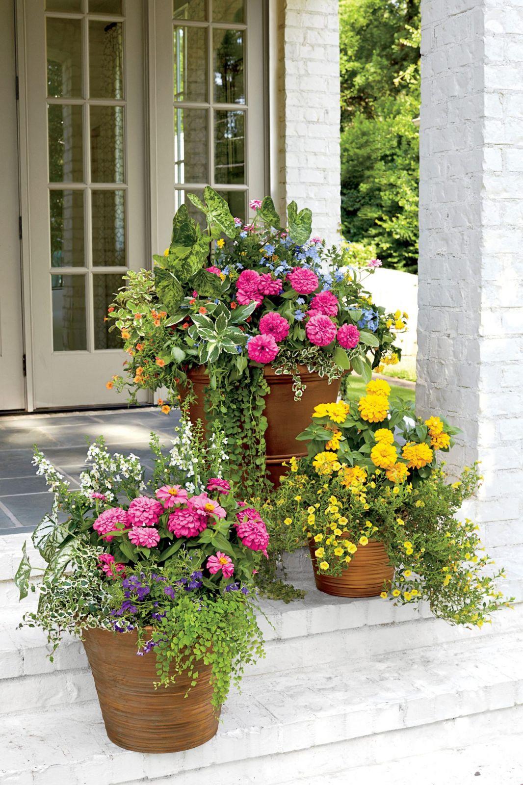 Adorable  ideas for large flower pots