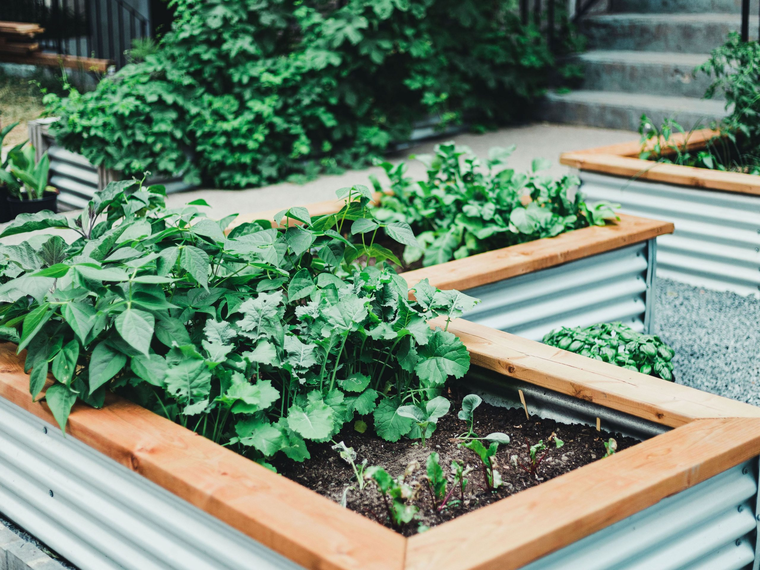 Adorable inexpensive raised garden bed ideas